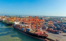 疫情衝擊下,我國各海港貨物吞吐量同比保持增長勢頭。(圖源:VNA)