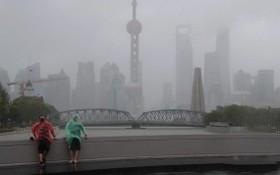 民眾任性出遊,體驗風雨。(圖源:互聯網)