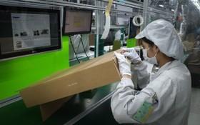 北江省某企業勞工返崗工作。(圖源:江山東)