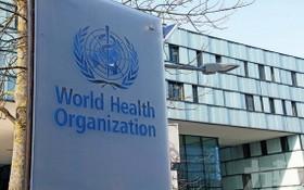 世界衛生組織總部。(圖源:互聯網)