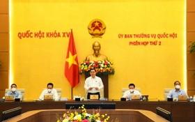 國會主席王廷惠(中)在會上致開幕詞。(圖源:Quochoi.vn)