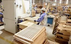 Woodsland公司的木製傢具生產車間一瞥。(圖源:越通社)