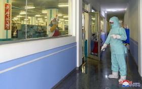 2021年1月,在平壤牙科衛生用品工廠,防疫人員正在進行預防性消殺作業。 (圖源:朝中社)