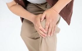 骨質疏鬆易誘發併發症 如何預防?