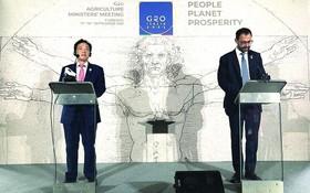 意大利農業部長和糧農組織總幹事舉行聯合新聞發佈會。(圖源:互聯網)