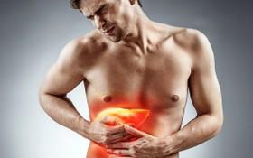 中年男愛吃高熱量食物養成脂肪肝