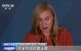 歐盟能源事務委員西姆森:歐盟成員國可以使用其中一些工具來快速解決問題。(圖源:CCV視頻截圖)