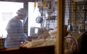 美國民眾服用未經批准的獸藥伊維菌素治療新冠數量激增24倍,由此導致的中毒及其他嚴重反應的病例數隨之翻了一倍。(示意圖源:互聯網)