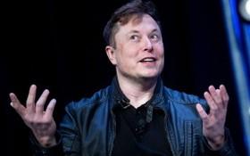 特斯拉CEO埃隆‧馬斯克。(圖源:互聯網)