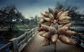 越南攝影師李黃龍的作品《賣魚籠者》獲得殊榮。