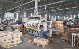 平陽省趙富祿家俱公司當前還需要招聘500 名非技術工人。(圖源:越通社)