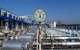 經白俄羅斯中轉,從俄羅斯輸往德國、奧地利等地的亞馬爾-歐洲天然氣管道。(圖源:互聯網)