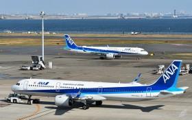 日本全日本空輸公司客機。(圖源:互聯網)