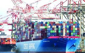 美國新澤西州,港口堆積的集裝箱。(圖源:互聯網)