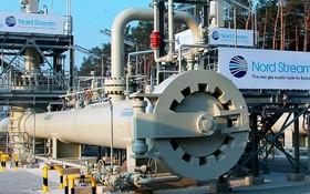 """""""北溪-2""""天然氣管道專案運營公司18日發表聲明說,""""北溪-2""""第一條支線的注氣工作已經完成。(圖源:互聯網)"""