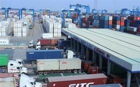 集裝箱車穿梭桔萊港碼頭。(圖源:T.H)