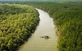沿海地區森林保護與開發提案獲通過。