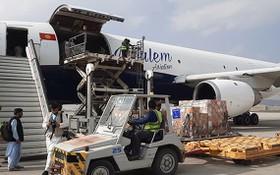 歐盟向阿富汗援助逾 28 噸醫療物資。(圖源: European Union)
