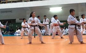 來自第五郡各跆拳道俱樂部的250多名學生參加比賽