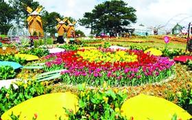 大勒花卉盛會成為國內外遊客觀光好去處。