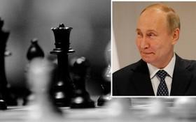 普京發電祝賀俄羅斯隊奪冠。