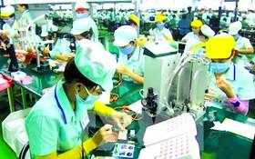 我國電子領域吸引許多 FDI 企業投資。
