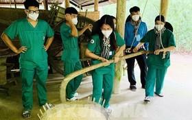 防疫一線醫護人員參與本市舉辦的尋根之旅行程。