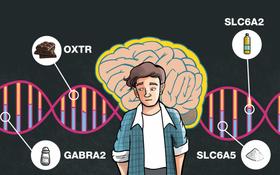 研究人員發現,他們分析的基因在個人的食物選擇和飲食習慣上扮演著重要的角色。(圖源:互聯網)