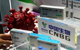 中國新冠疫苗今日運抵越南