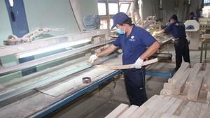 Vietnam's wood industry maintains growth momentum despite Covid-19