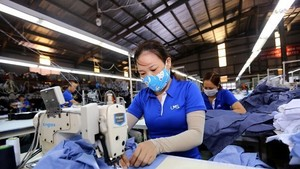 RCEP has enabled Vietnam to be connected better with global supply chains compared with other new-generation free trade agreements. (Photo: VNA)