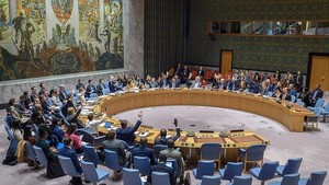An overview of a UNSC session (Photo: VNA)