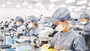 Around 150,000 employees come back to HCMC