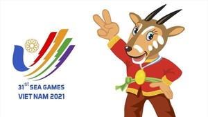 SEA Games Federation updated on plan for SEA Games 31