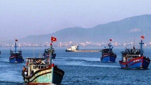 Coastal localities take stronger measures against IUU fishing