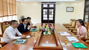 Ms. Tran Huyen Trang is on her duty. (Photo: Vinh Phuc Province Department of Planning and Investment)