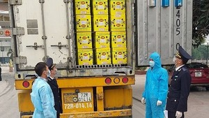 The customs force in Ho Chi Minh City is checking imports and exports while observing Covid-19 prevention and control measures. (Photo: haiquanhochiminh.gov.vn)