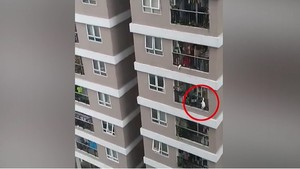 Three-year-old child survived 13-storey fall