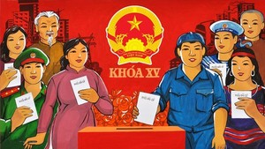 Overseas Vietnamese with only one Vietnamese nationality can run for NA deputies