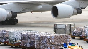CAAV discusses establishment of VN's first cargo airline