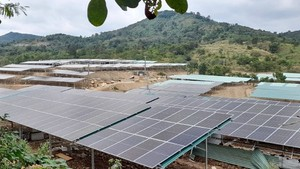 Many rooftop solar power projects camouflage as farms in Central Highlands