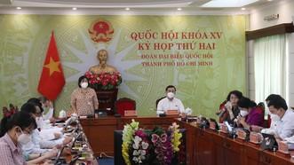 ĐB Nguyễn Thị Hồng Hạnh: Nên ban hành Luật Sở hữu trí tuệ mới
