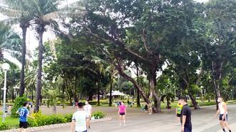 Công viên trong thành phố