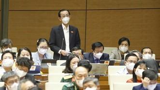 Đại biểu Quốc hội Thành phố Hồ Chính Minh Trần Hoàng Ngân phát biểu ý kiến. Ảnh: TTXVN