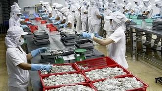 Mực xuất sang Trung Quốc tiếp tục tăng