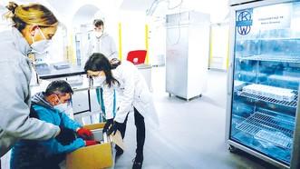 Vận chuyển vaccine Covid-19 đến một trung tâm tiêm chủng tại Rome, Italy