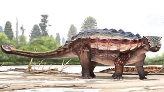 Tìm thấy hóa thạch khủng long con quý hiếm