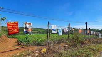 Từ phản ánh của Báo SGGP: Thanh tra Bộ TN-MT kiểm tra tình trạng phân lô bán nền ở Lâm Đồng