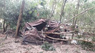 Cây ngã đè lên một chốt chống dịch dọc biên giới trên địa bàn huyện Tân Biên, Tây Ninh