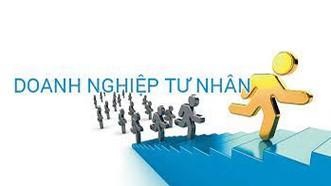 Giai đoạn 2015-2020 có hơn 735.000 doanh nghiệp thành lập mới